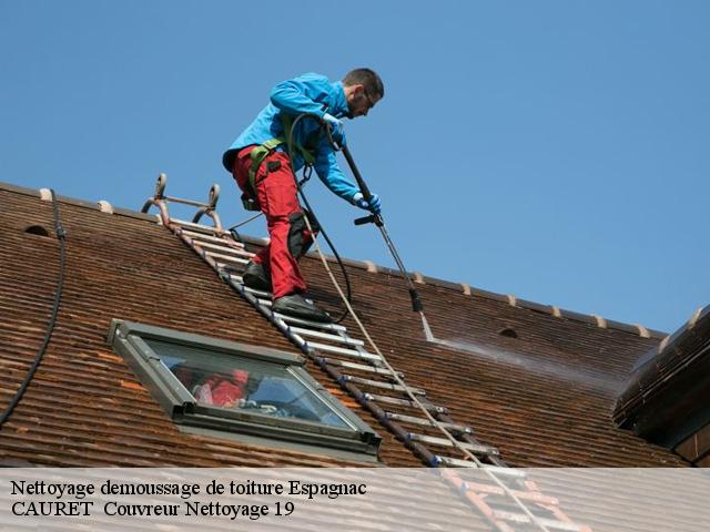 Nettoyage demoussage de toiture Espagnac tél: 05.19.71.05.49